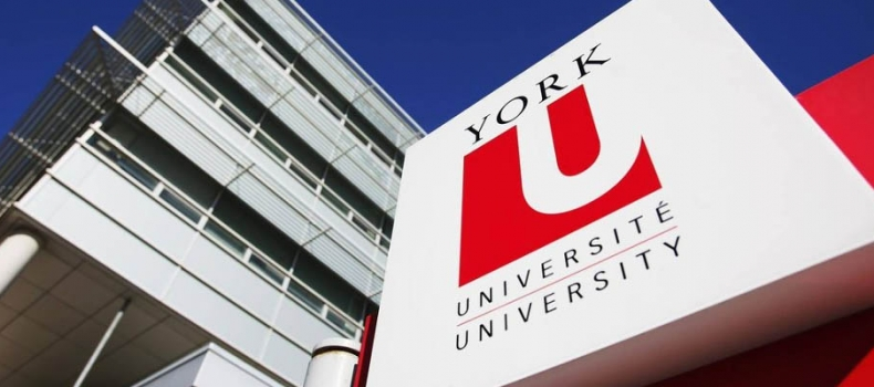 Workers with CUPE 3903 accept York University offer, head back to work Monday